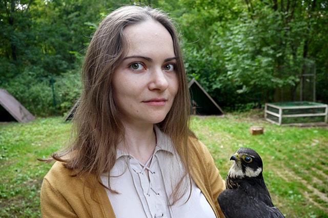 попечение птиц сокольники