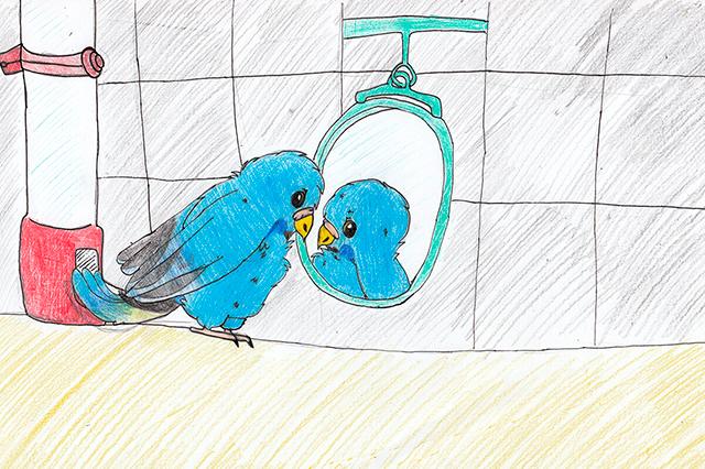 дети рисуют птиц в сокольниках